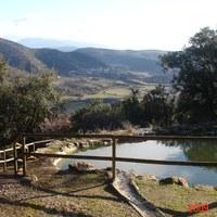 Font de la Mora (Tartareu)